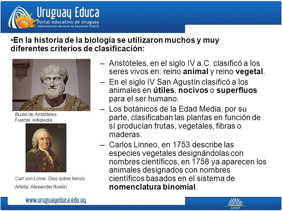 En la historia de la biología se utilizaron muchos y muy diferentes criterios de clasificación: