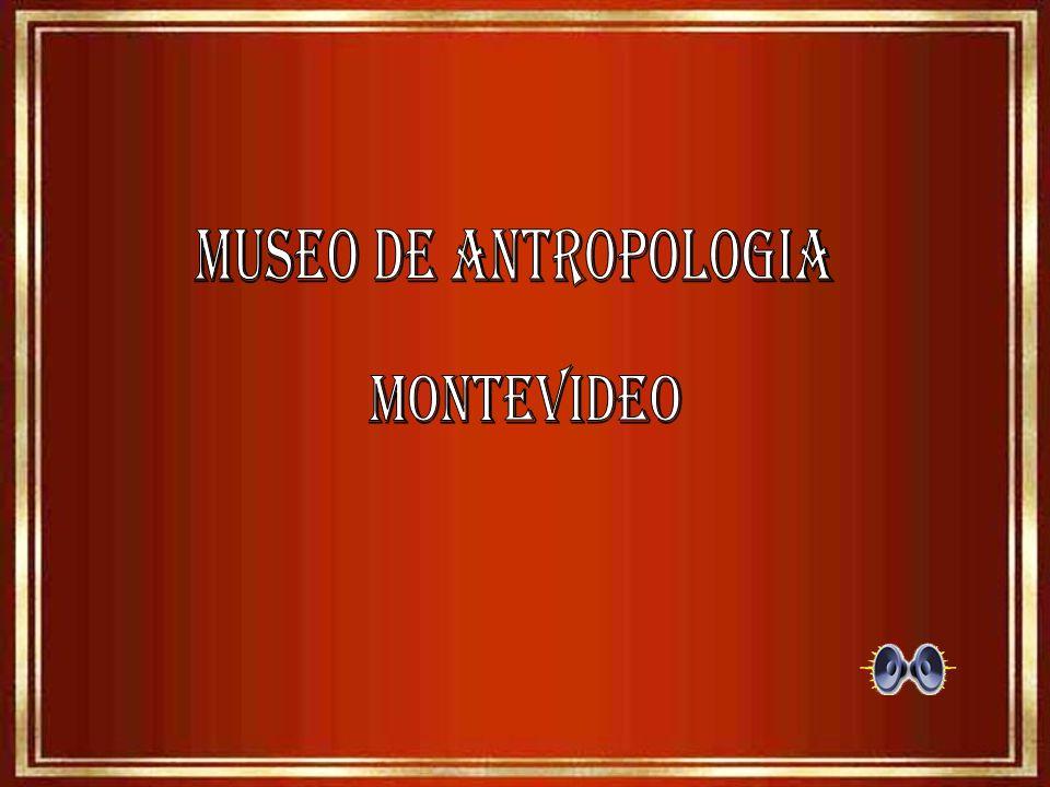MUSEO DE ANTROPOLOGIA MONTEVIDEO