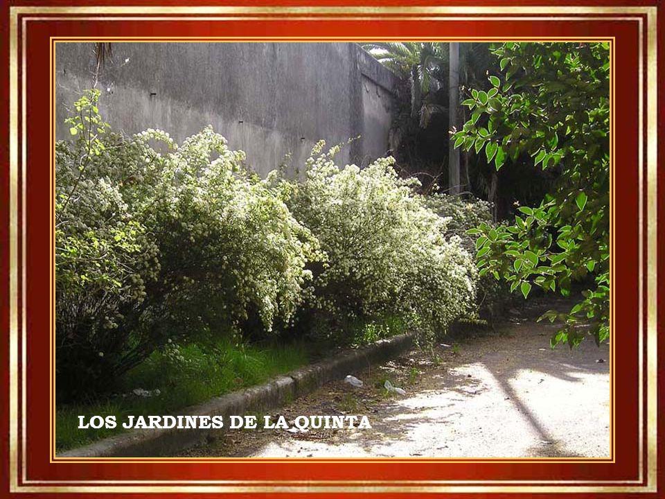 LOS JARDINES DE LA QUINTA