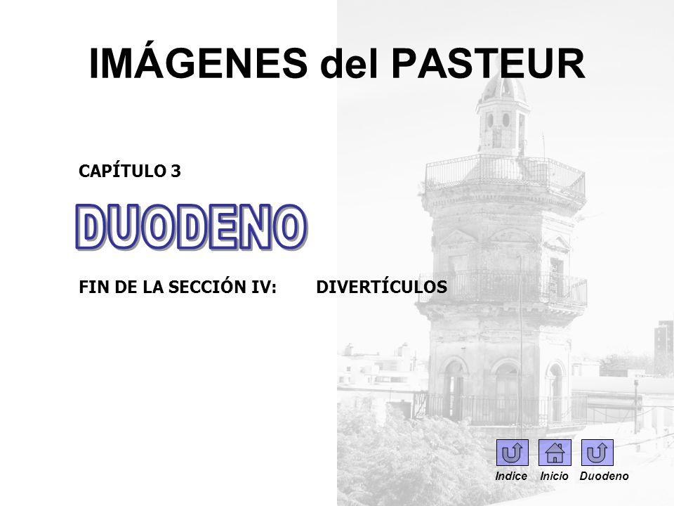 IMÁGENES del PASTEUR DUODENO CAPÍTULO 3
