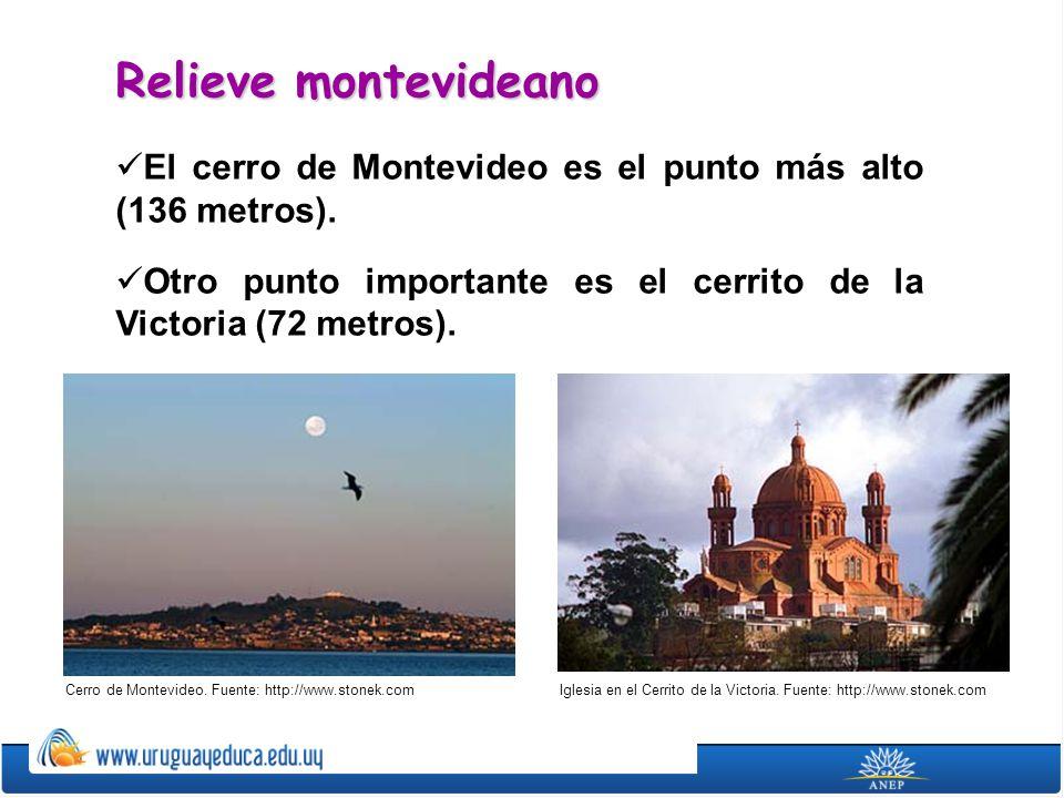 Relieve montevideano El cerro de Montevideo es el punto más alto (136 metros). Otro punto importante es el cerrito de la Victoria (72 metros).