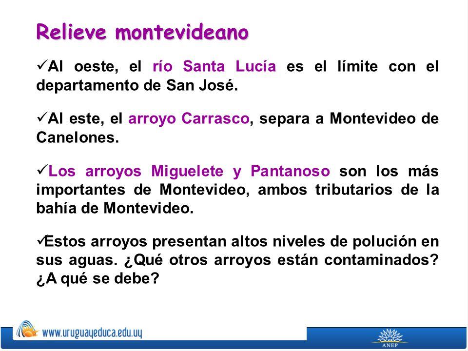 Relieve montevideano Al oeste, el río Santa Lucía es el límite con el departamento de San José.