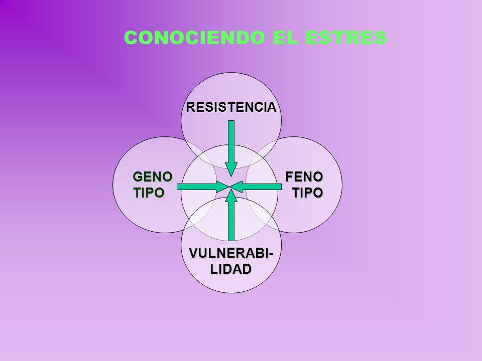 CONOCIENDO EL ESTRES RESISTENCIA GENO TIPO FENO TIPO VULNERABI- LIDAD