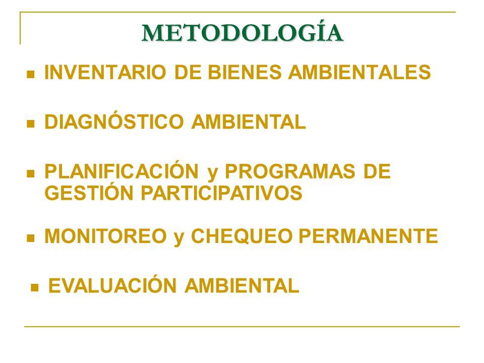 METODOLOGÍA INVENTARIO DE BIENES AMBIENTALES DIAGNÓSTICO AMBIENTAL
