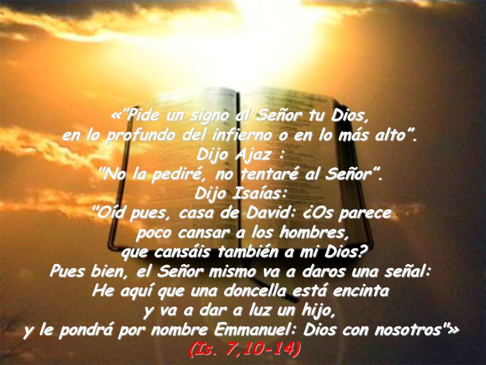 « Pide un signo al Señor tu Dios,