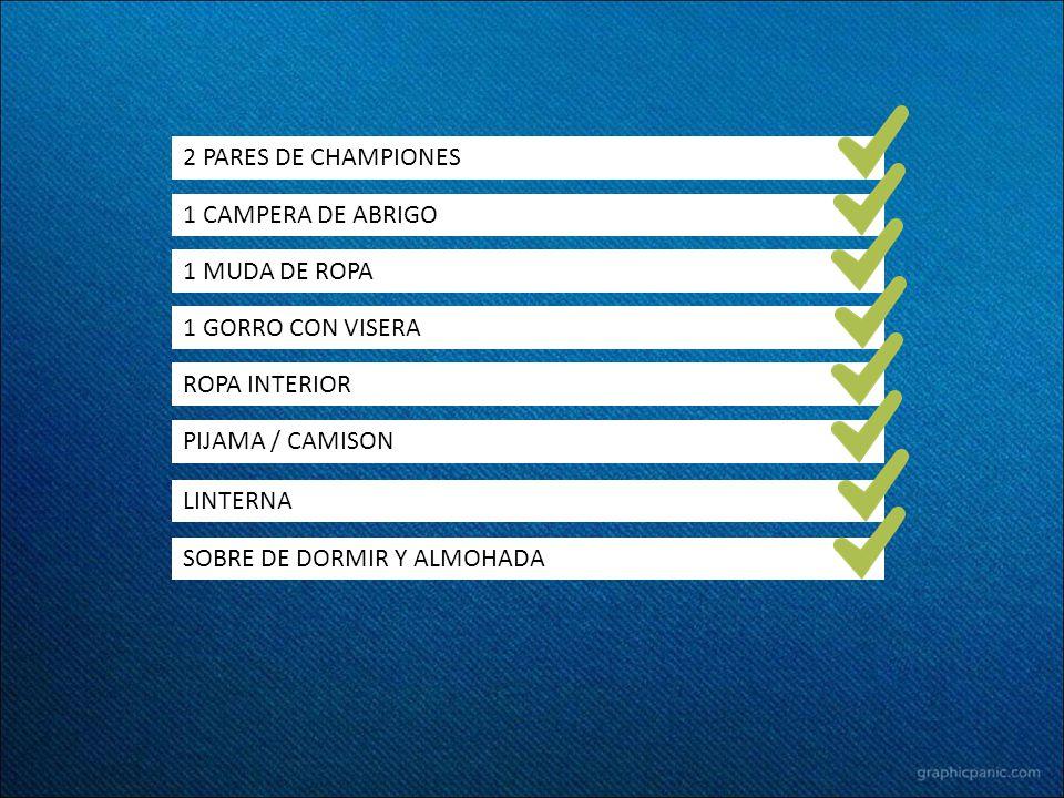 2 PARES DE CHAMPIONES 1 CAMPERA DE ABRIGO. 1 MUDA DE ROPA. 1 GORRO CON VISERA. ROPA INTERIOR. PIJAMA / CAMISON.