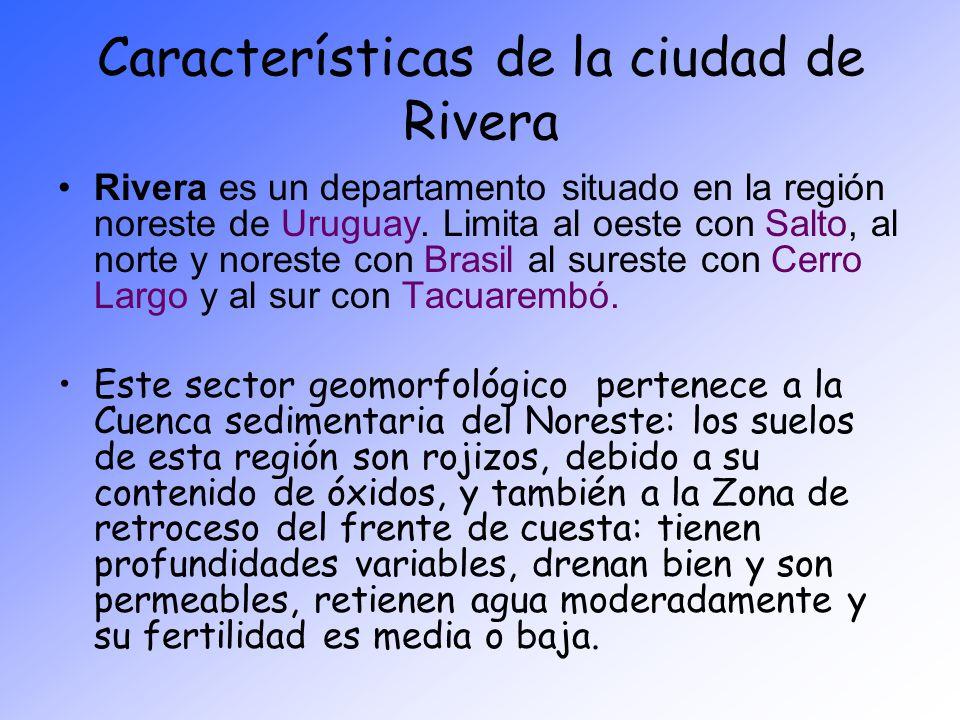 Características de la ciudad de Rivera