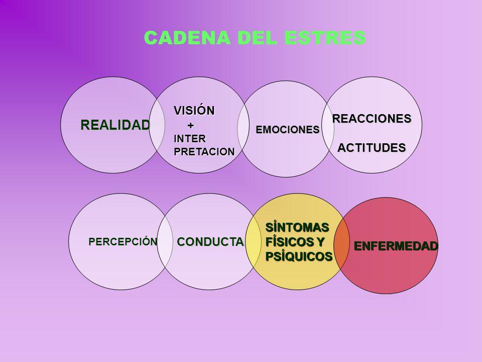 CADENA DEL ESTRES REALIDAD REACCIONES ACTITUDES EMOCIONES VISIÓN +