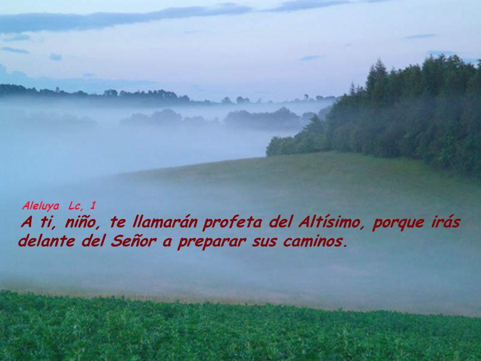 Aleluya Lc, 1 A ti, niño, te llamarán profeta del Altísimo, porque irás delante del Señor a preparar sus caminos.