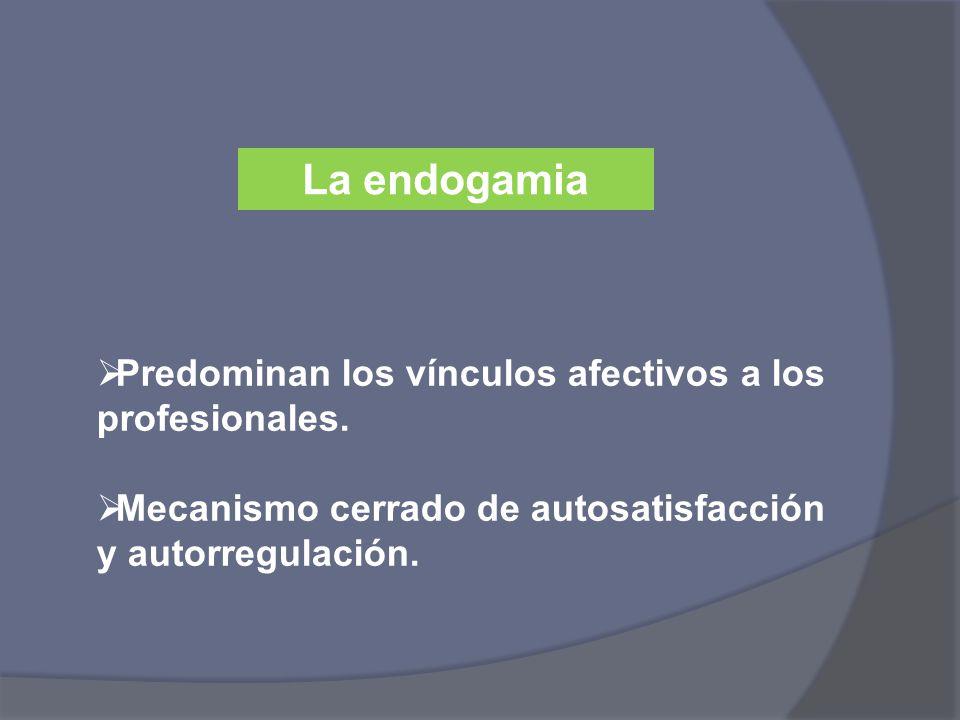 La endogamia Predominan los vínculos afectivos a los profesionales.