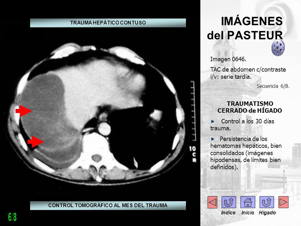 6/8 IMÁGENES del PASTEUR Imagen 0646.