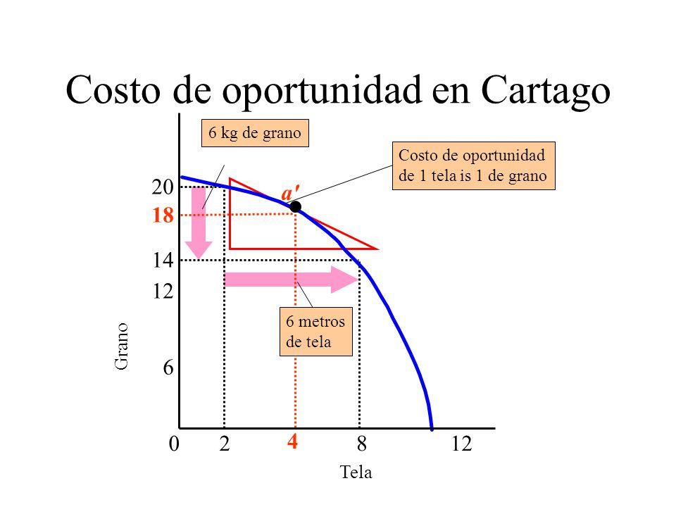 Costo de oportunidad en Cartago