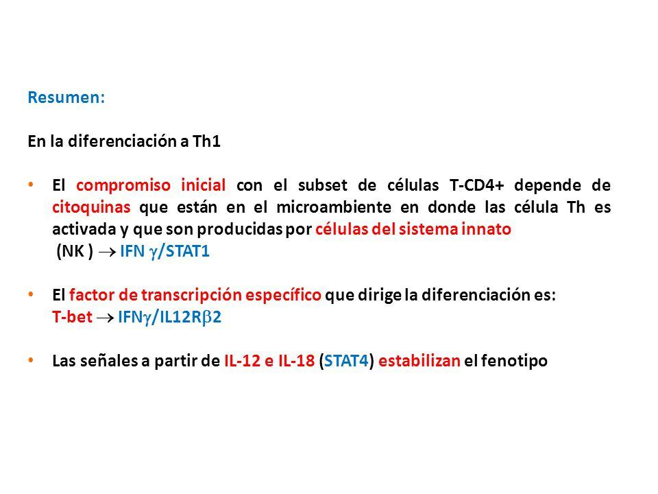 Resumen: En la diferenciación a Th1.