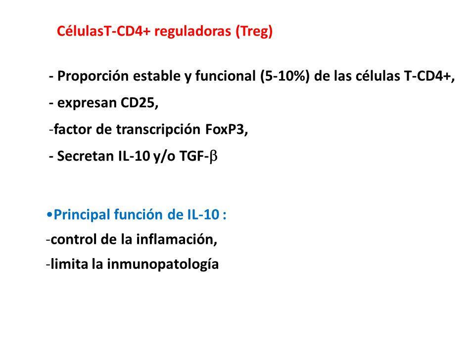 CélulasT-CD4+ reguladoras (Treg)