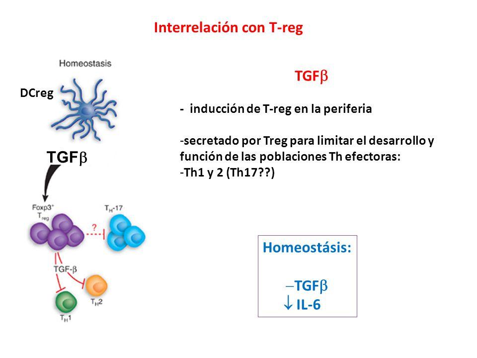 Interrelación con T-reg