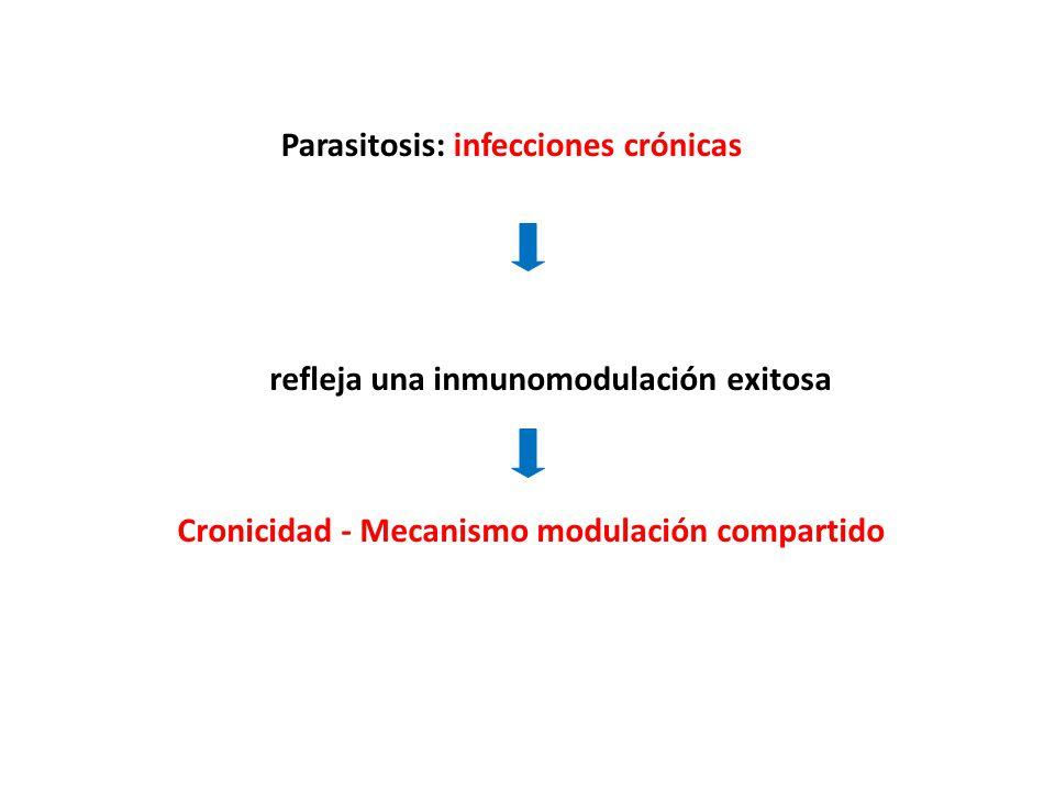 Parasitosis: infecciones crónicas