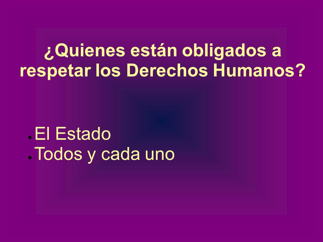 ¿Quienes están obligados a respetar los Derechos Humanos