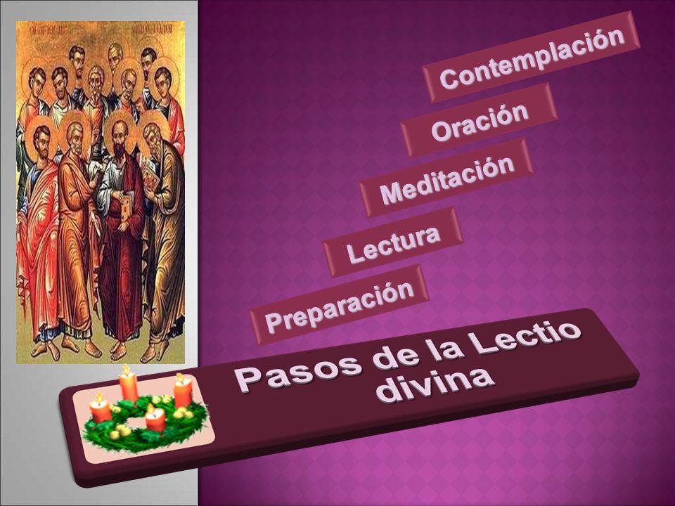 Contemplación Oración Meditación Lectura Preparación