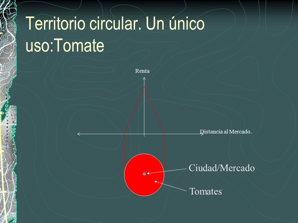 Territorio circular. Un único uso:Tomate