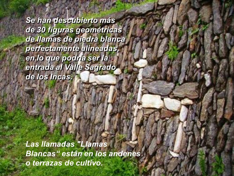 Se han descubierto más de 30 figuras geométricas. de llamas de piedra blanca. perfectamente alineadas,