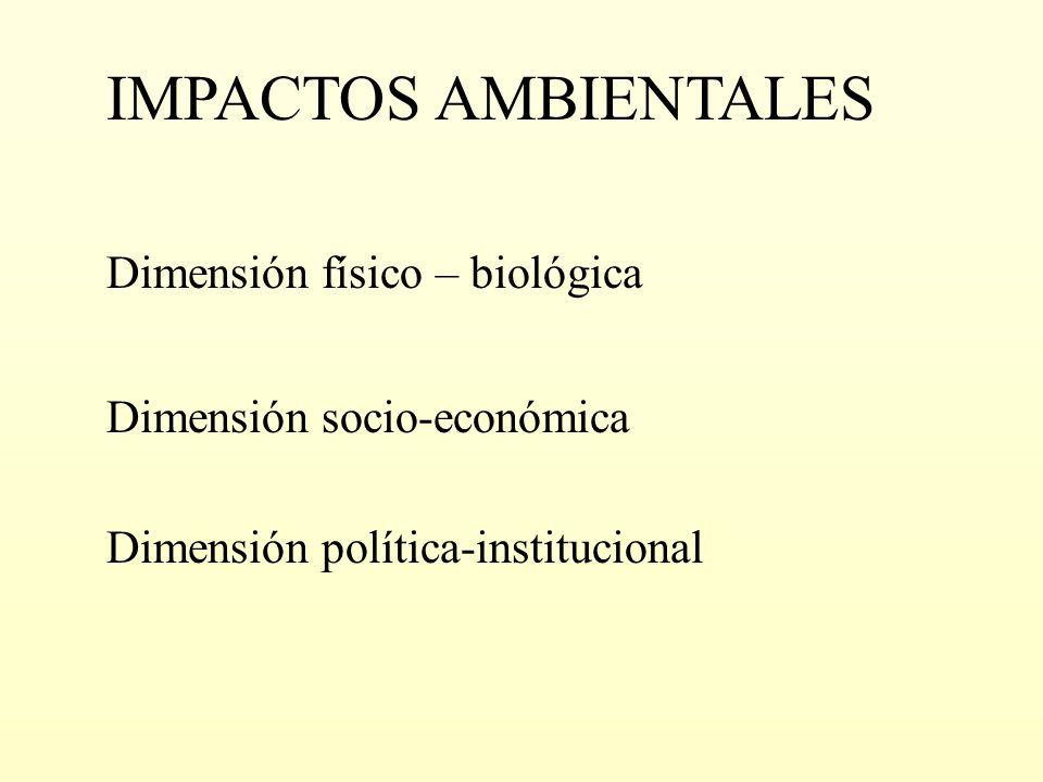 IMPACTOS AMBIENTALES Dimensión físico – biológica