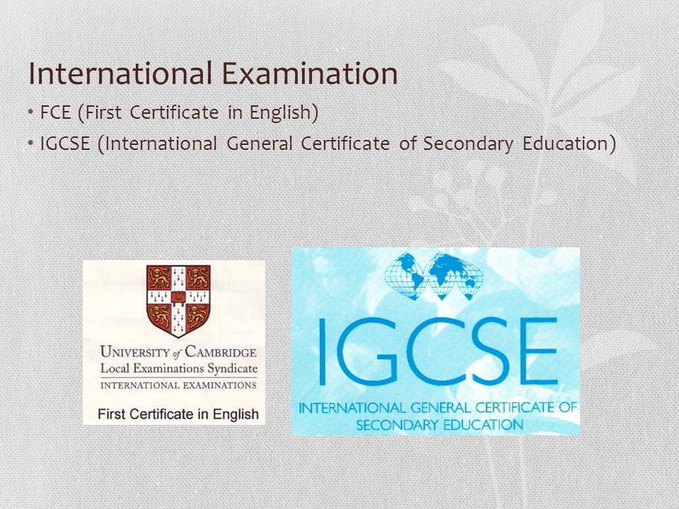 International Examination