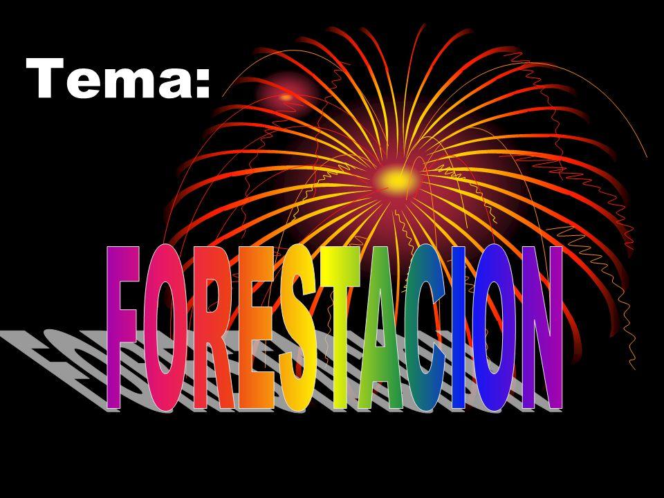 Tema: FORESTACION