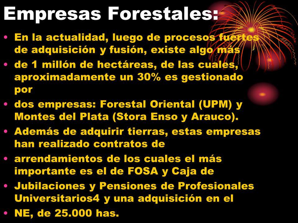 Empresas Forestales: En la actualidad, luego de procesos fuertes de adquisición y fusión, existe algo más.