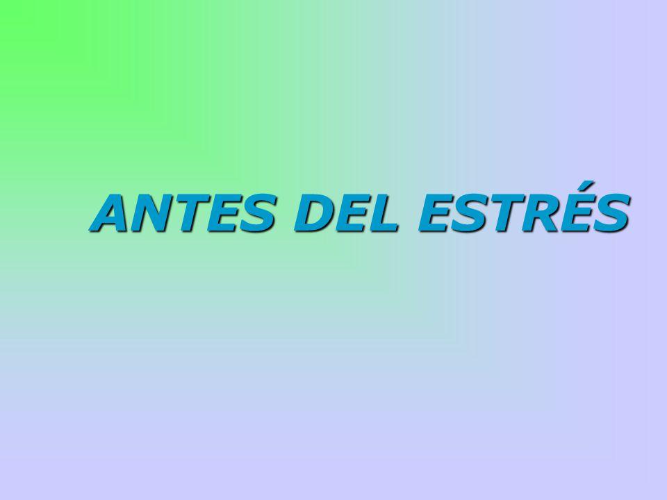 ANTES DEL ESTRÉS