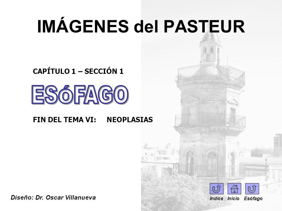 IMÁGENES del PASTEUR ESÓFAGO CAPÍTULO 1 – SECCIÓN 1