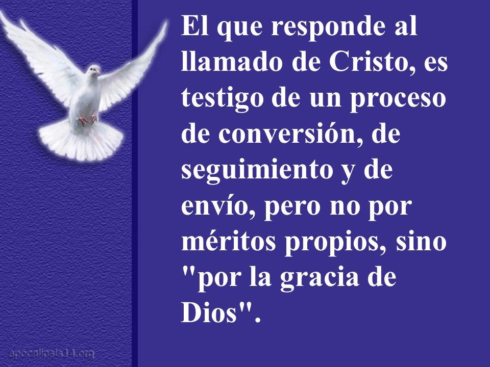 El que responde al llamado de Cristo, es testigo de un proceso de conversión, de seguimiento y de envío, pero no por méritos propios, sino por la gracia de Dios .