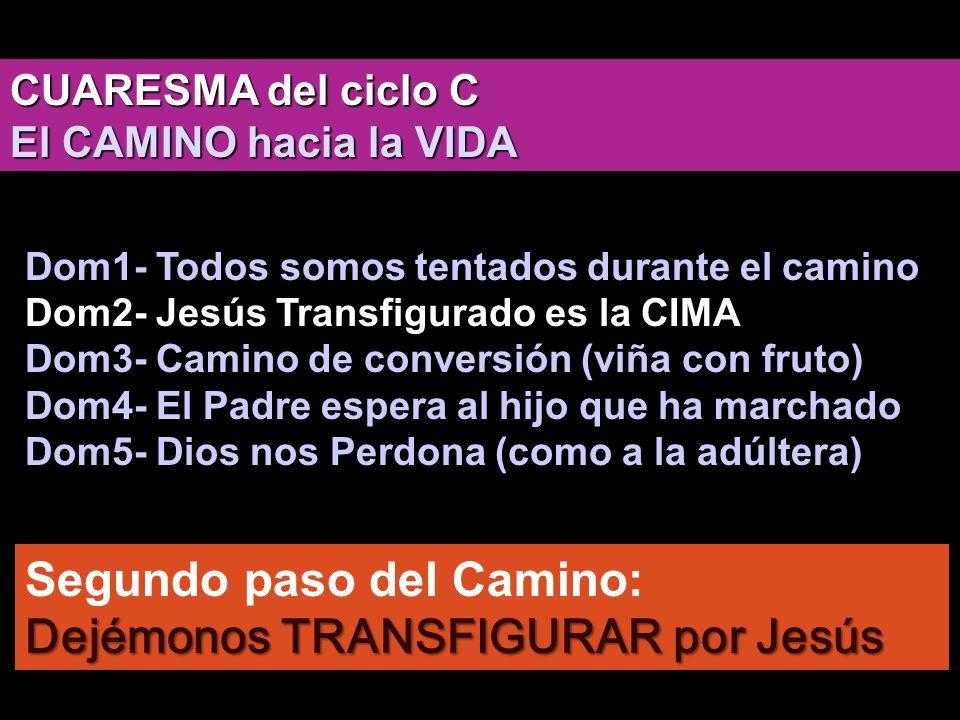 Segundo paso del Camino: Dejémonos TRANSFIGURAR por Jesús