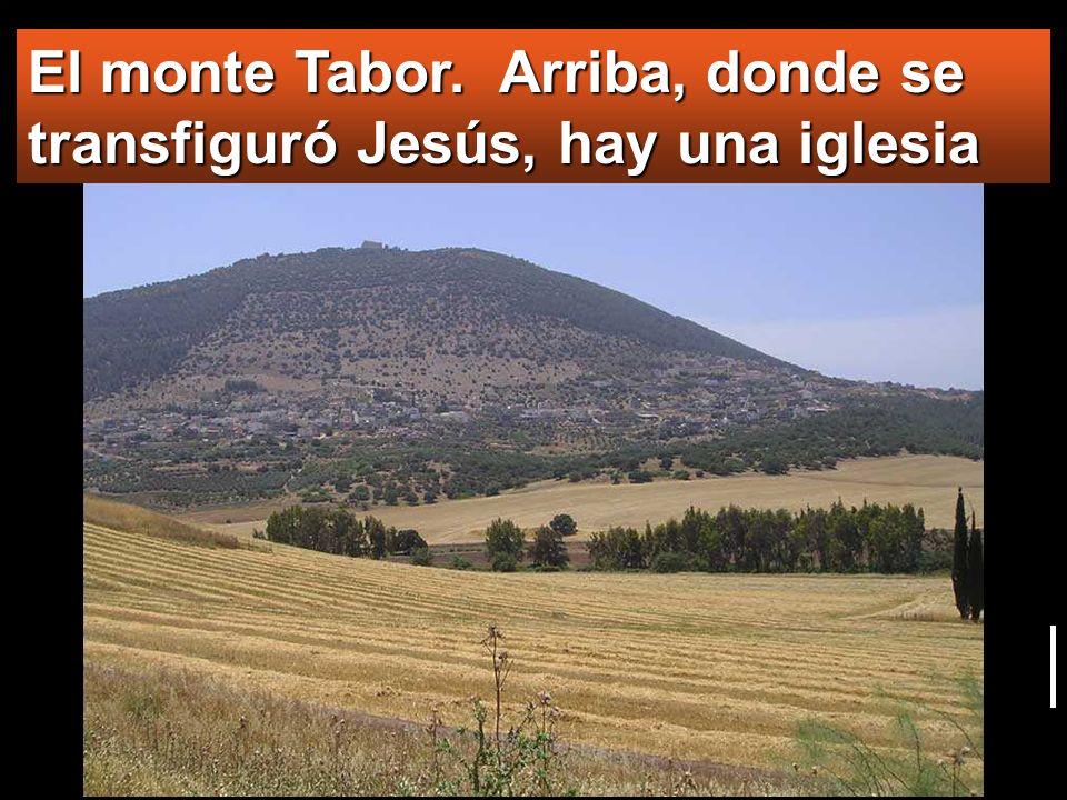El monte Tabor. Arriba, donde se transfiguró Jesús, hay una iglesia