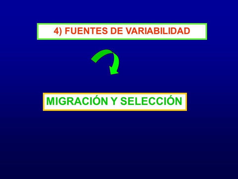 4) FUENTES DE VARIABILIDAD