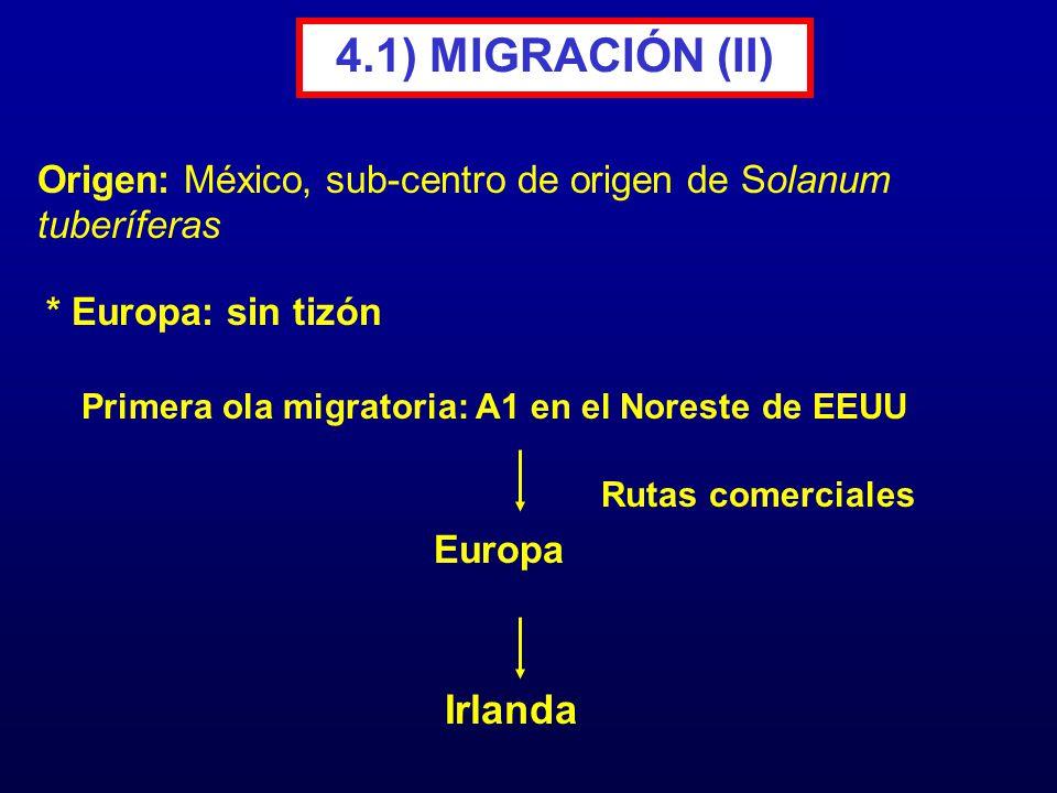 4.1) MIGRACIÓN (II) Irlanda