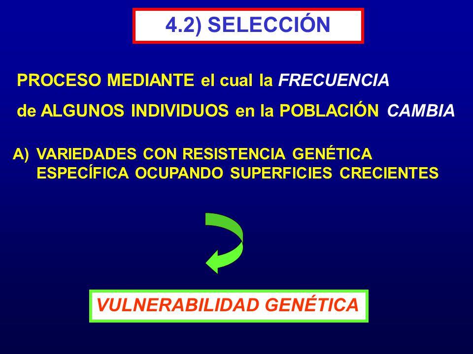 4.2) SELECCIÓN VULNERABILIDAD GENÉTICA