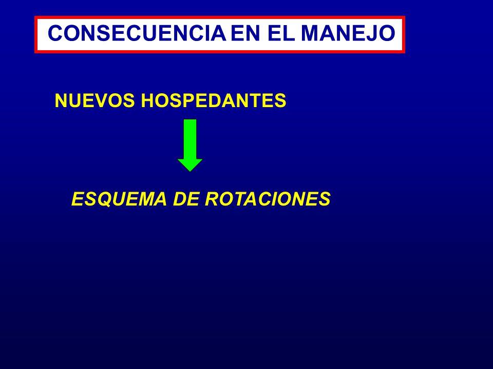 CONSECUENCIA EN EL MANEJO