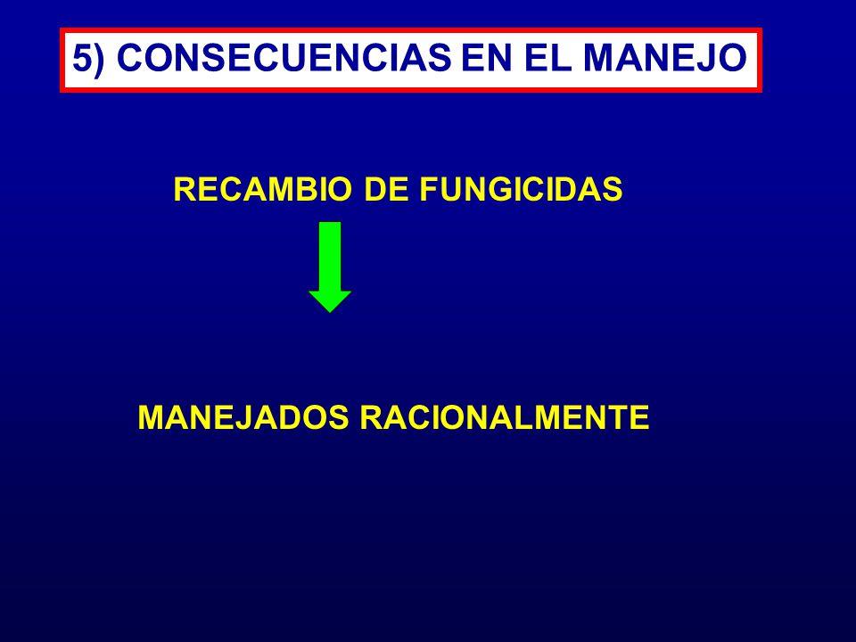 5) CONSECUENCIAS EN EL MANEJO
