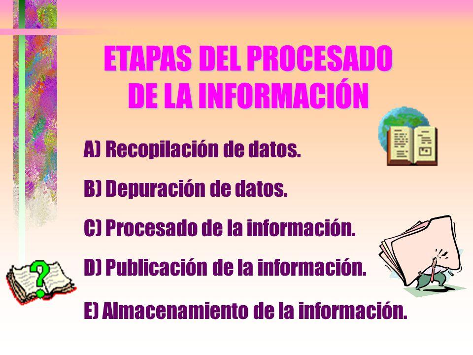 ETAPAS DEL PROCESADO DE LA INFORMACIÓN