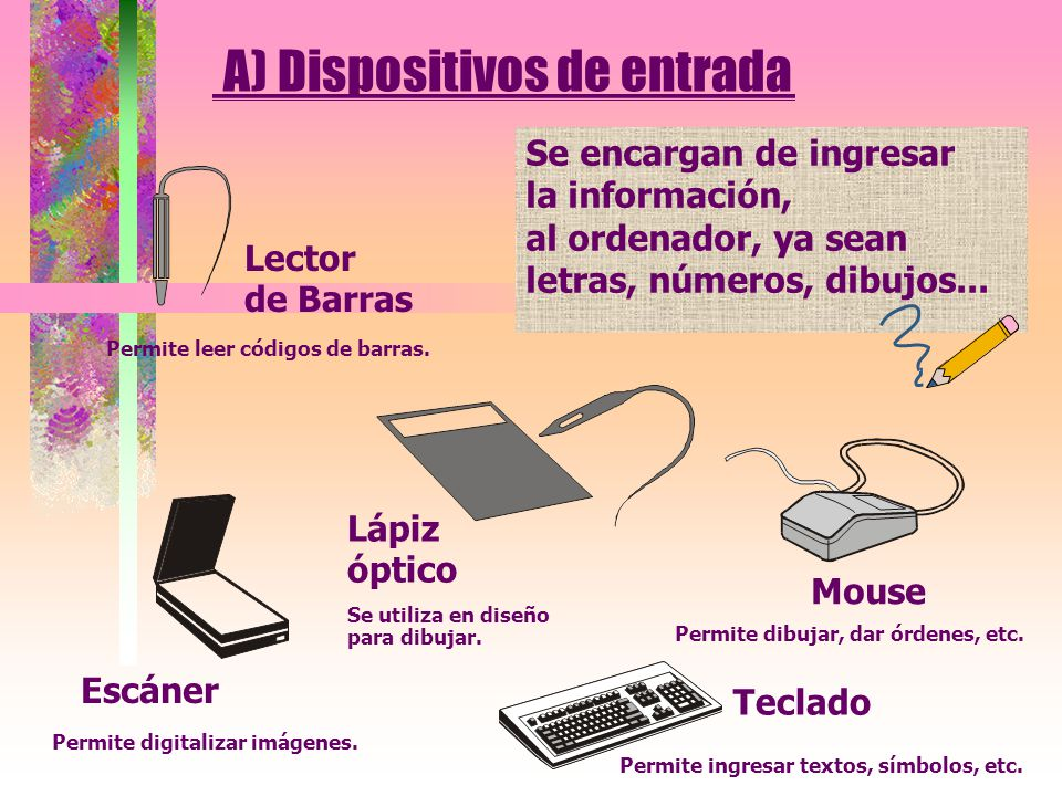 A) Dispositivos de entrada