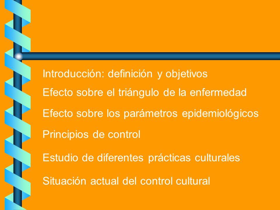 Introducción: definición y objetivos