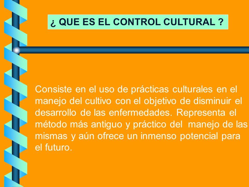 ¿ QUE ES EL CONTROL CULTURAL