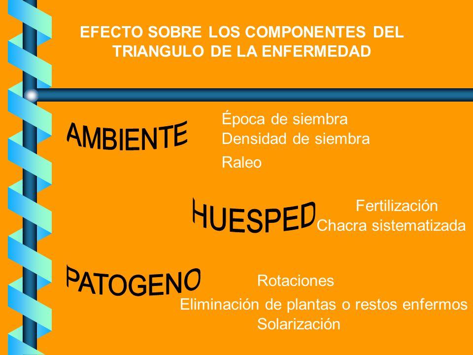 EFECTO SOBRE LOS COMPONENTES DEL TRIANGULO DE LA ENFERMEDAD
