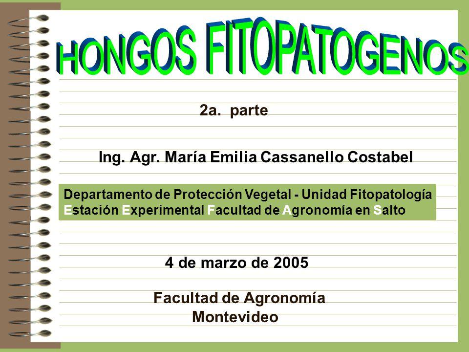 HONGOS FITOPATOGENOS 2a. parte