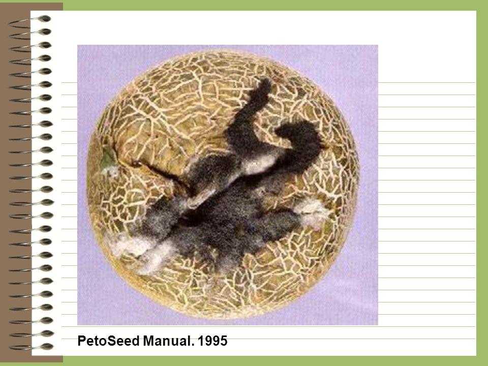 PetoSeed Manual. 1995