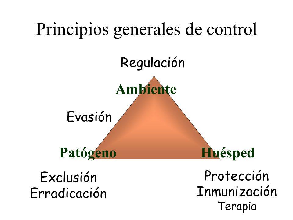 Principios generales de control