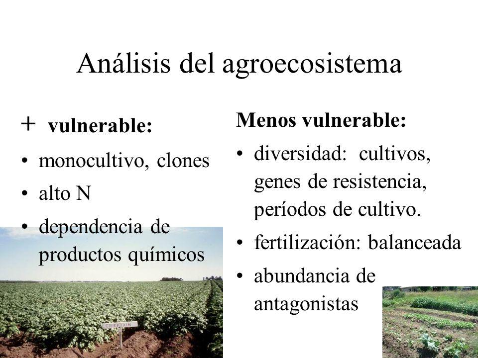 Análisis del agroecosistema