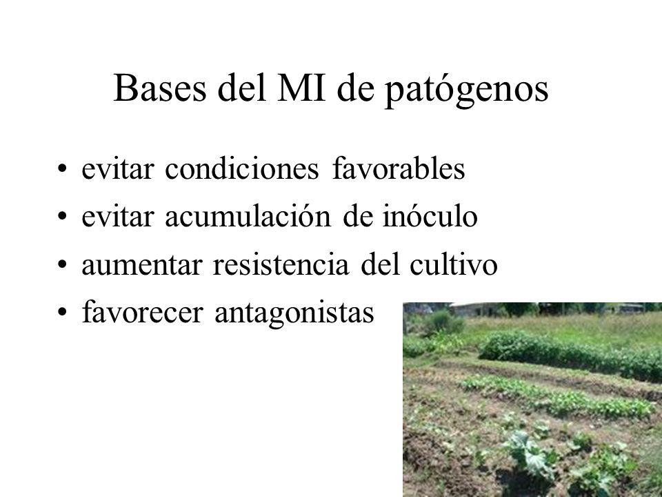 Bases del MI de patógenos