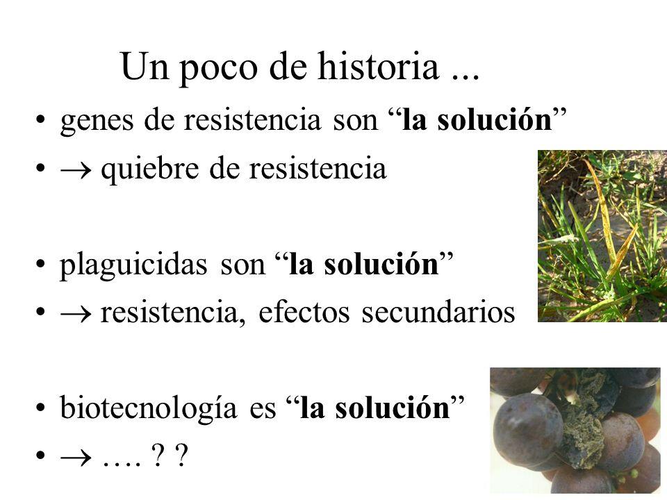 Un poco de historia ... genes de resistencia son la solución