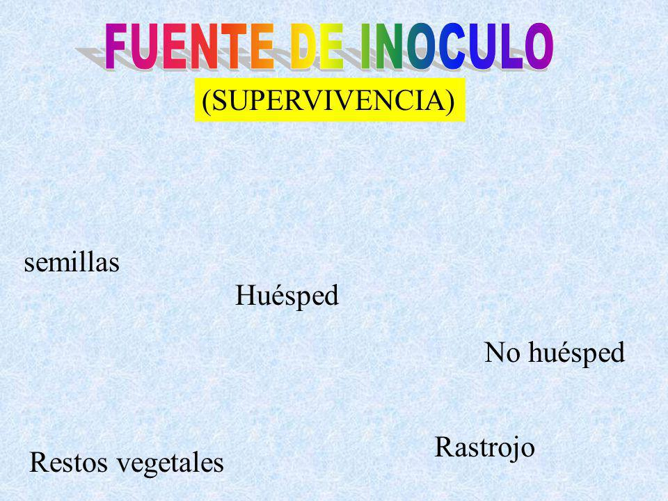 FUENTE DE INOCULO (SUPERVIVENCIA) semillas Huésped No huésped Rastrojo